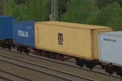 Containertragwagen Typ Sgnss CD